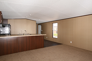Clayton-Equalizer-16X76-Living-Room-and-Kitchen-1