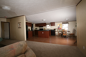 TRU-Steal-II-28X72-Living-Room-and-Kitchen